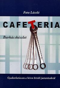 Fata László: Cafeteria barkácskészlet - Gyakorlatiasan a béren kívüli juttatásokról (Könyv)
