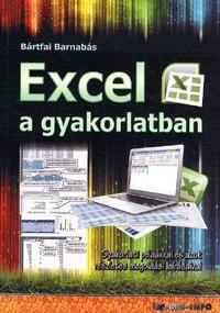 Bártfai Barnabás: Excel a gyakorlatban - Gyakorlati példákkal és azok részletes megoldási leírásaival -  (Könyv)