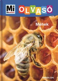 Christina Braun: Méhek - Mi Micsoda Olvasó -  (Könyv)