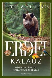 Peter Wohlleben: Erdei kalauz - Növények, állatok, évszakok, kirándulás -  (Könyv)