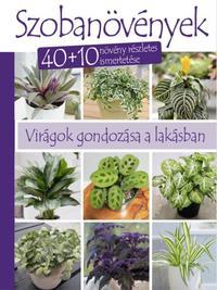 Kerti kislexikon - Négy évszak tennivalói -  (Könyv)