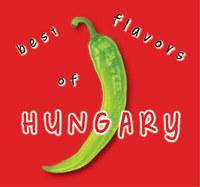 Hajni István, Kolozsvári Ildikó: Best flavors of Hungary -  (Könyv)