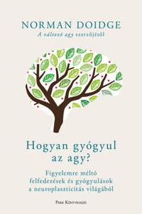 Norman Doidge: Hogyan gyógyul az agy? - Figyelemre méltó felfedezések és gyógyulások a neuroplaszticitás világából -  (Könyv)