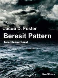 Jacob D. Foster: Beresit Pattern - Teremtésmintázat -  (Könyv)