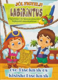 Labirintus - Figyelmet és koncentrációt fejlesztő munkafüzet óvodásoknak és kisiskolásoknak -  (Könyv)