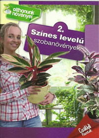 Színes levelű szobanövények - Családi füzetek - 2. - Otthonunk növényei 2. -  (Könyv)