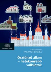 Ösztönző állam - hatékonyabb vállalatok -  (Könyv)