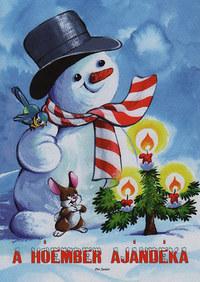 Radvány Zsuzsa: A hóember ajándéka -  (Könyv)