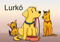 Lurkó -  (Könyv)