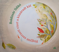 Boldizsár Ildikó: Hogyan szerzett vizet a kiszáradt kút -  (Könyv)
