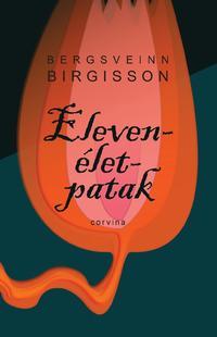 Bergsveinn Birgisson: Elevenélet-patak -  (Könyv)