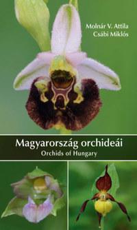 Molnár V. Attila, Csábi Miklós: Magyarország orchideái -  (Könyv)