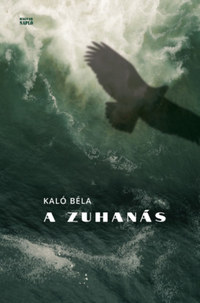 Kaló Béla: A zuhanás -  (Könyv)