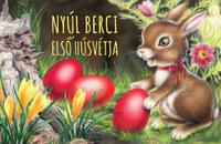 Izmindi Katalin: Nyúl Berci első húsvétja -  (Könyv)